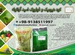 sabzineh_maralco_13990930_151701856